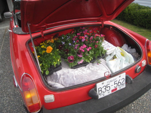 MGB Rack and Trunk Capacity